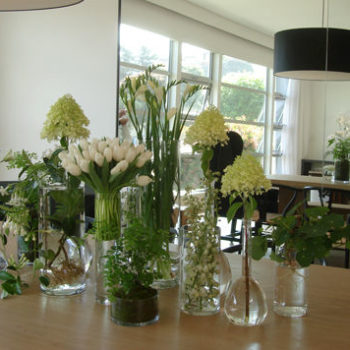 we like it wild: flower laboratory