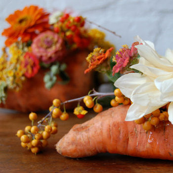 we like it wild: fall market to table