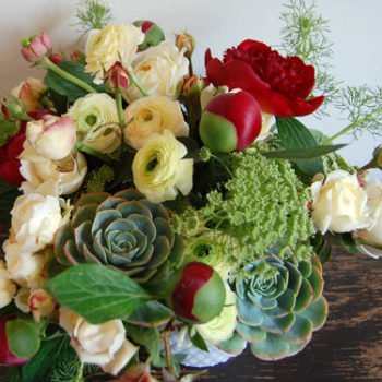 we like it wild: ranunculus