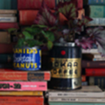made with love: tin can planters