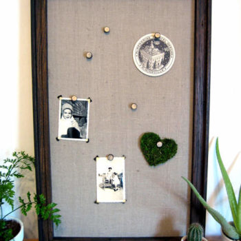 diy project: twig push-pins and wall hooks