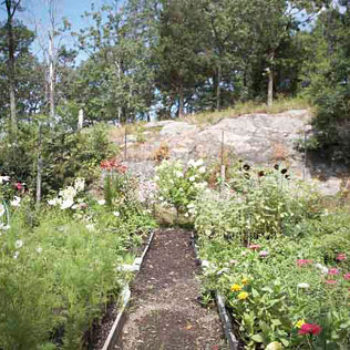 osborn castle garden at cat rock