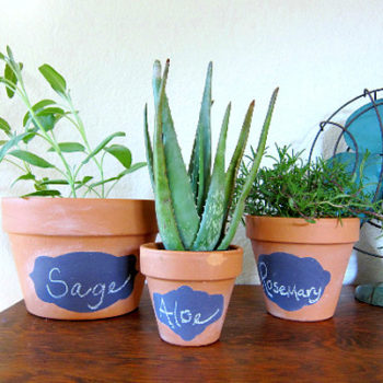 diy project: bonnie's chalkboard planting pots