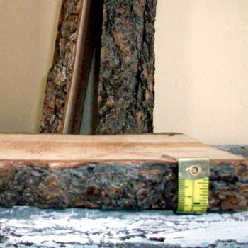 diy project: rachel's rustic log shelves