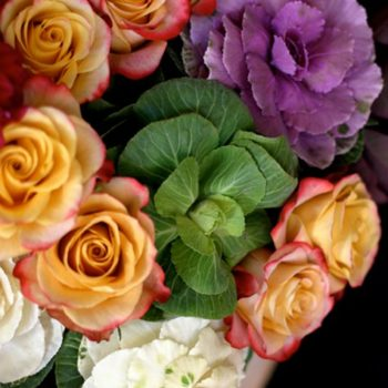 flowers a-z: b is for brassica