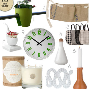 2010 gift guides: $50 and under