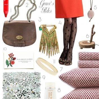 2010 gift guides: grace's picks