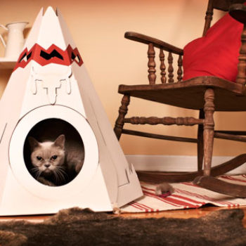 2010 gift guides: for the animal lover