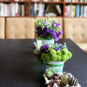 "flowers a-z: ""e"" is for echeveria, eryngium and eustoma"