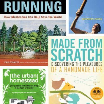 small measures with ashley: eco winter reads