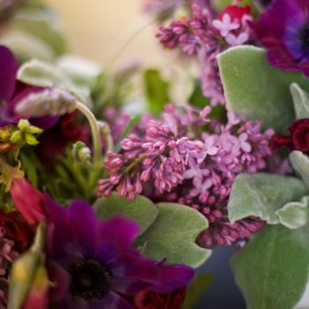 flowers a-z: l is for lilac