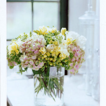 flowers a-z: m is for magical coral pink hydrangea