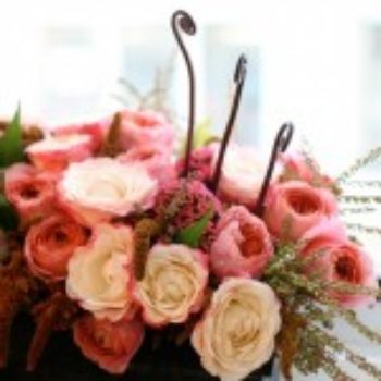 flowers a-z: r is for (garden) roses