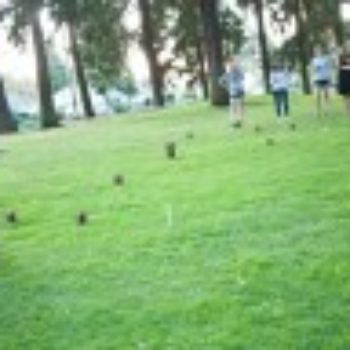 diy project: kubb — the swedish lawn game