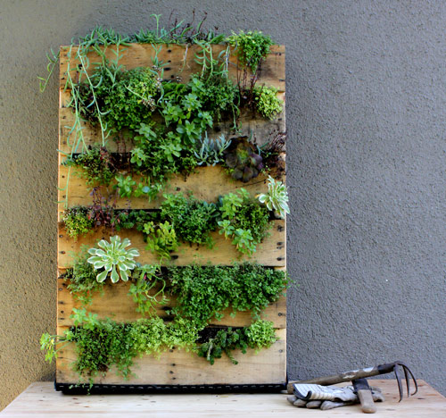 Pallet Vertical Garden | A Guide to Upcycled Homesteading