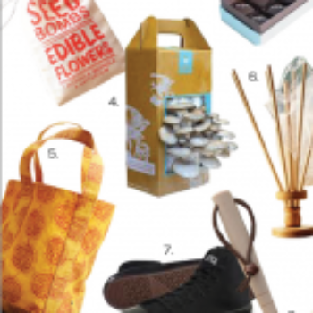 2011 gift guide: eco finds under $100