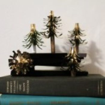 diy project: magnetic mini forest