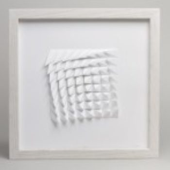 The Extraction Series by Matthew Shlian