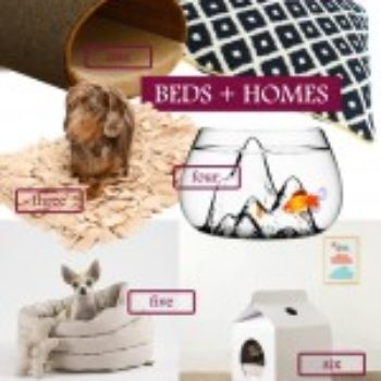 2012 D*S GIFT GUIDE: For Pets and Pet Lovers