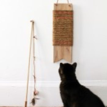 DIY Project: Pretty Cat Toys