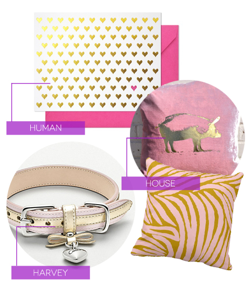 Human House Harvey, pink and gold