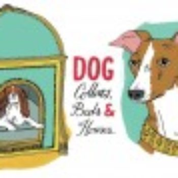 Past & Present: Dog Collars, Beds & Houses + Roundup