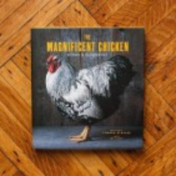 On Our Bookshelf: The Magnificent Chicken