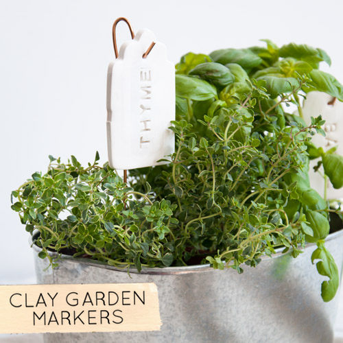 ... For Anyone With A Yard Or Window Garden, Or As More Substantial Gift  Tags Later In The Year. The Best Part? It Was Under $5 To Make  Happy  Planting! Xo, ...
