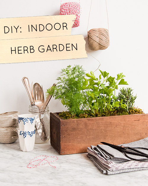 Diy Kitchen Garden Planter Design Sponge