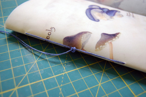 D_S waxed book.12