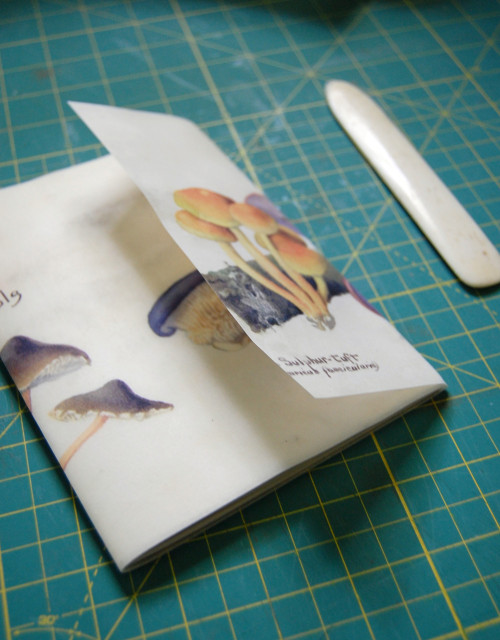 D_S waxed book.7