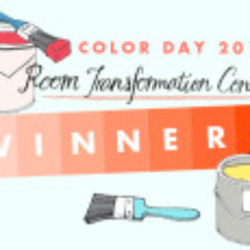 Color Day 2013 Winners