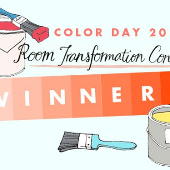 ds_colorcontest_winners