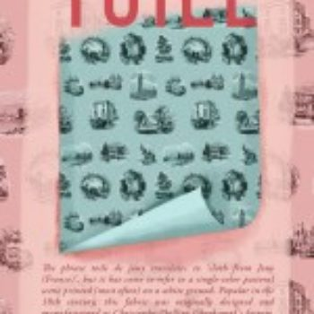 D*S Pattern Book: Toile