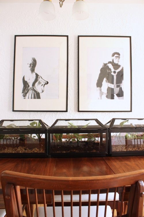 Design*Sponge Sneak Peek These pieces are my own photographs that I had blown up into engineering prints. The gentleman to the right is my husband's Cyclops action figure from his childhood, and the lady to the left was a ceramic figurine that was in my childhood bedroom basically my entire life. My husband definitely wasn't sold on the concept, but now, I think he secretly loves seeing his favorite childhood toy everyday. Oh, and those terrariums? My thumb is so black that even those no-maintenance plants are long gone. I've since replaced them with plastic aquarium plants...sad but true.