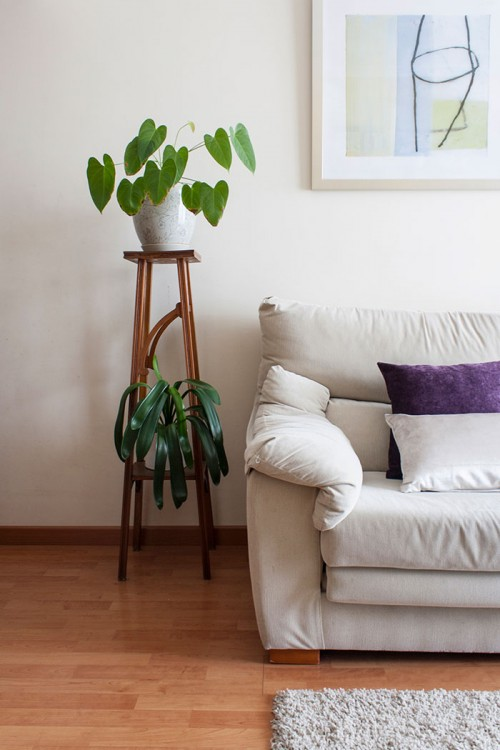 Design Sponge/ The wood plant holder is a family heirloom from my grandmother (from the 50s).