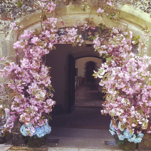Design*Sponge's Favorite Florists on Instagram: instagram.com/euphoricflowers