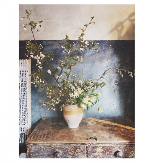 Design*Sponge's Favorite Florists on Instagram: instagram.com/JoFlowers