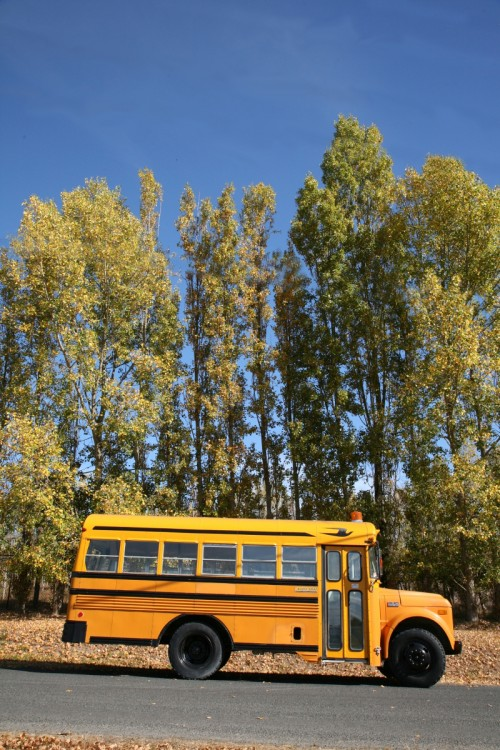 A School Bus Turned Vacation Home Design Sponge