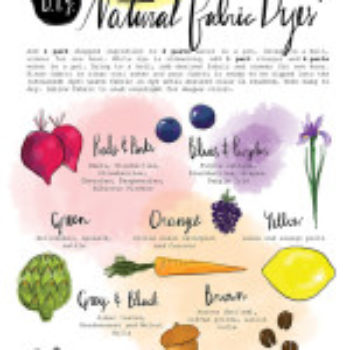 Printable Freebie: Natural Dyes Chart