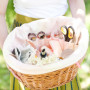 ds_diy_brittany_picnicbasket_intro