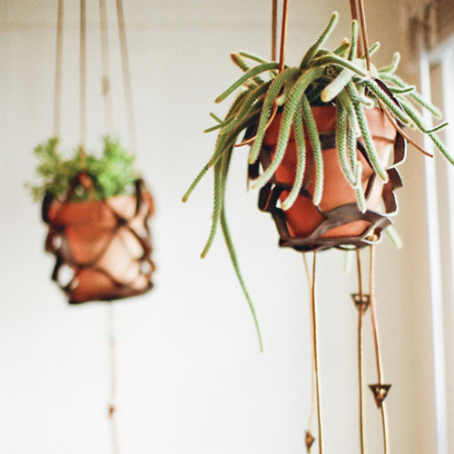 designsponge-diy-leather-plant-hanger-1