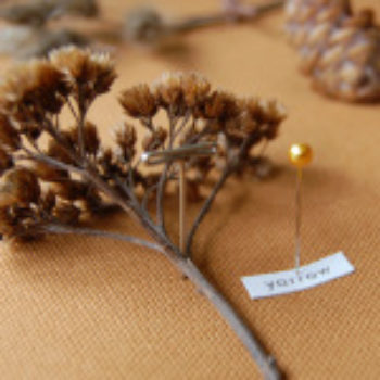 10 Fall Flower Projects