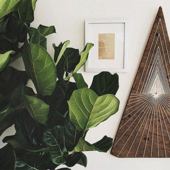 25 Shapes to Inspire Your Home