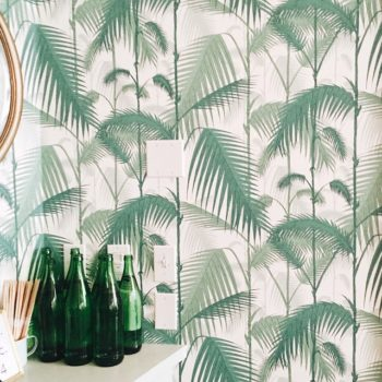 16 Beautiful Wallpapers from Readers