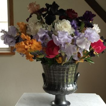 Home Ec: Skip The Store & Grow Your Own Flowers