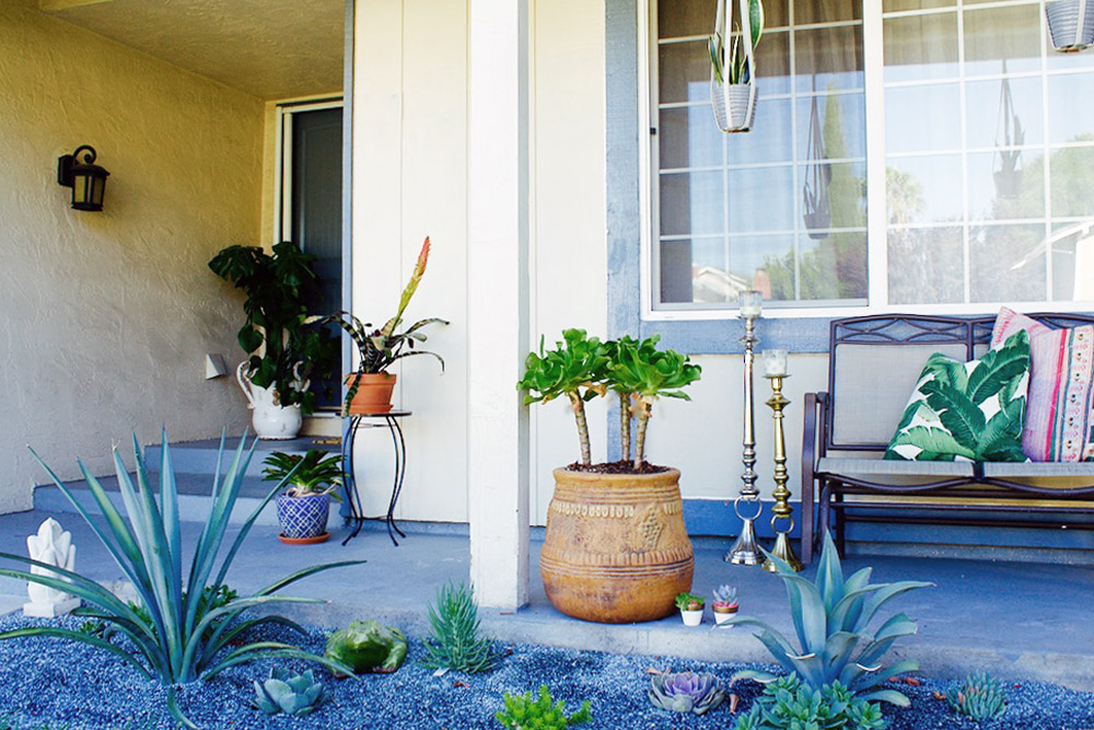 Before & After: A Ramshackle Glam Xeriscape, on Design*Sponge