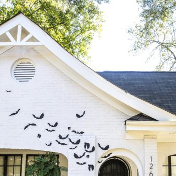 Best of the Web + Halloween House Bat DIY
