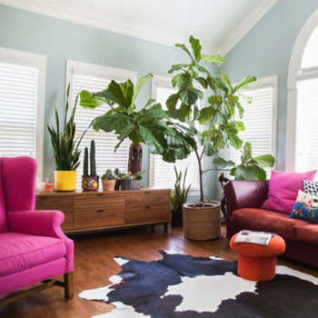 A Vibrant, Sophisticated Home in Fayetteville, NC