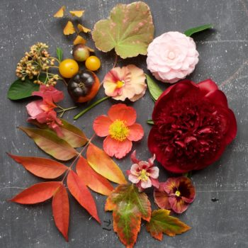 Autumn Flower Centerpiece by Kiana of Tulipina
